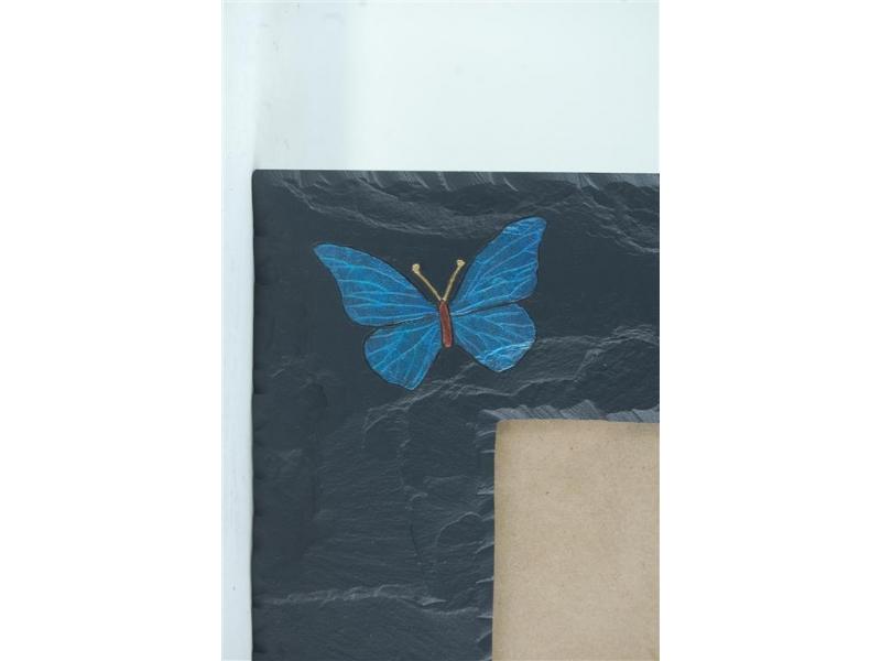 butterfly-on-slate