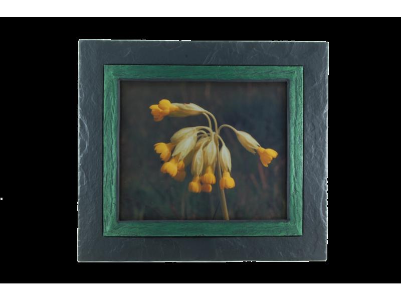 cowslip-in-slate-frame-green-band-medium