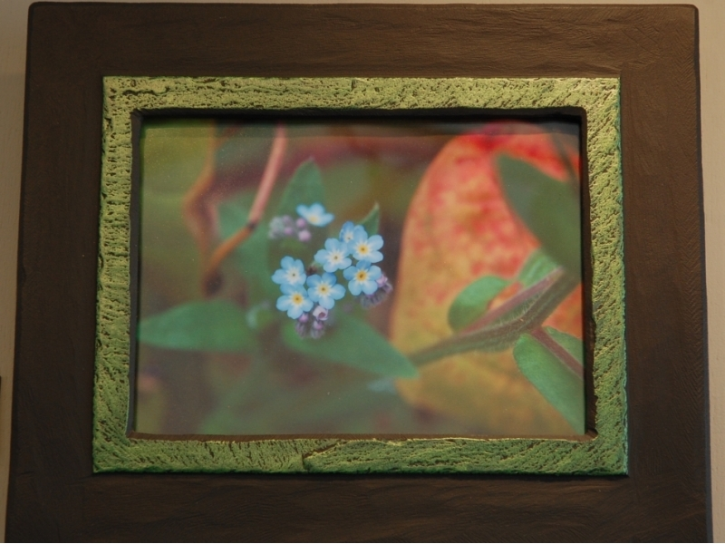 forget-me-not-flower-in-a-picture-frame-by-heartworks-1-1